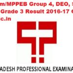 MP Vyapam/MPPEB Group 4, DEO, Steno, Assistant Grade 3 Result 2016-17 Online at vyapam.nic.in